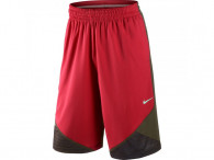 Šortky Nike Lebron chainmail