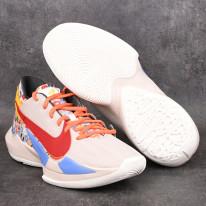Basketbalové boty Nike Zoom Freak 2