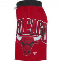 Šortky Nike Chicago Bulls Courtside
